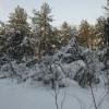 В Новосибирске на Обском водохранилище отстроили «Город эскимосов»