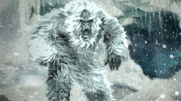 Ученые опровергли прямое родство Йети и неизвестного вида белого медведя
