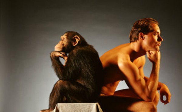 обезьяна человек