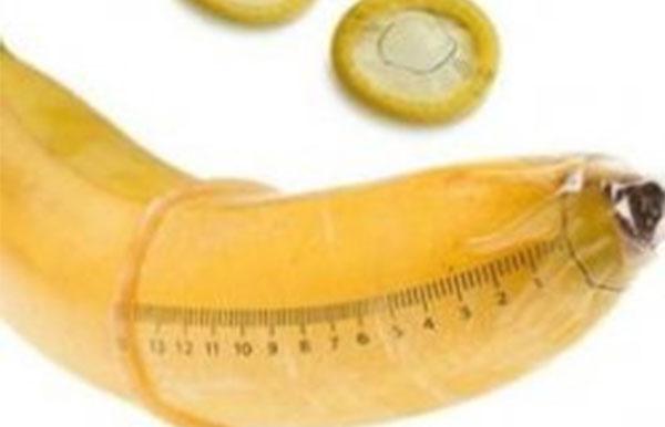 длина полового члена