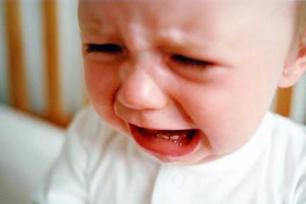 породистые когда малыш перестанет плакать оплата проезд