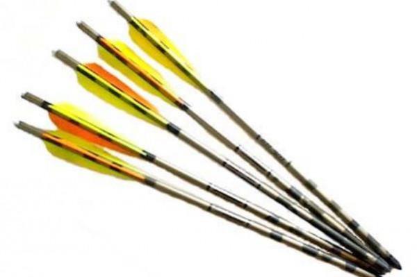 стрелы арбалета