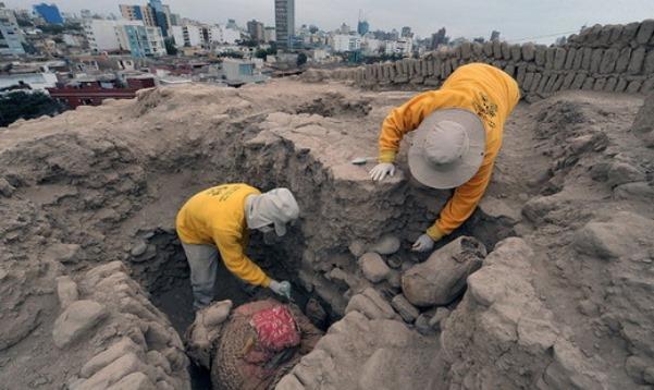 ВАргентине обнаружили останки неизвестного организма