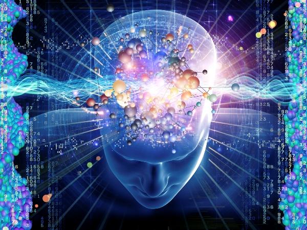 Ученые выясняют, как мозг интерпретирует наши чувства