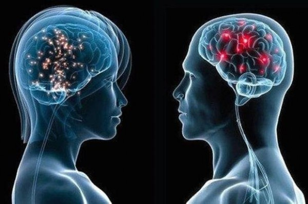 исследование мозг