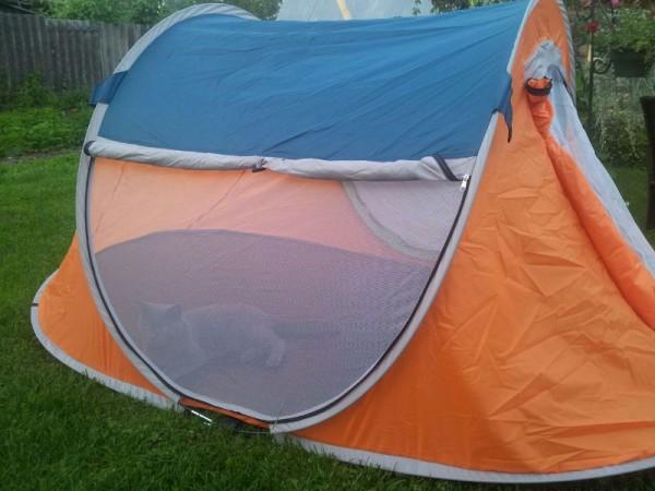 __ палатка