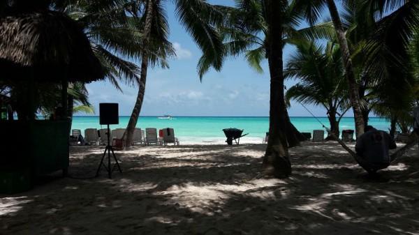 __ пляж, песок, пальмы, отпуск, отдых, море, океан