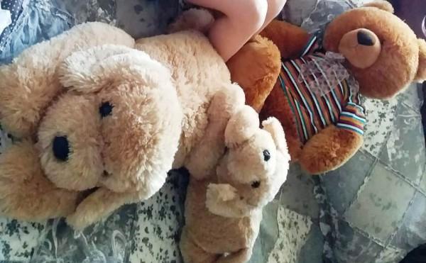 __ мягкие игрушки, собачка, мишка, собака, медведь