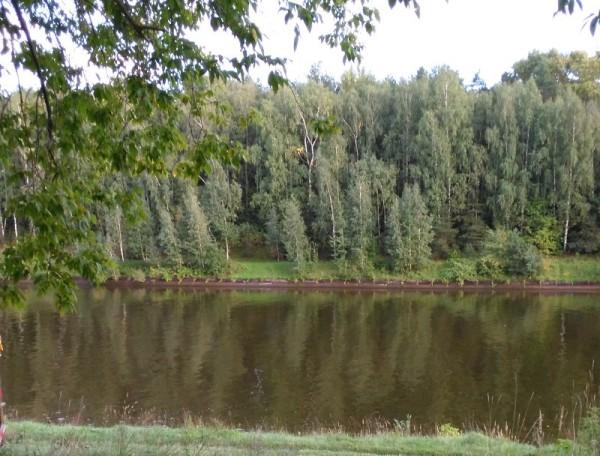 __ река, озеро, природа, лес