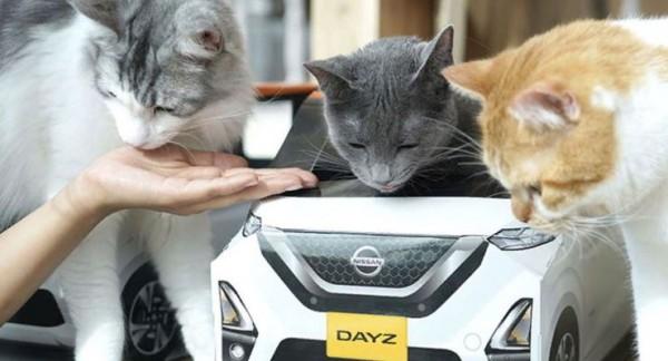 Nissan, домик для котов