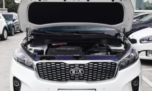 Kia, мотор